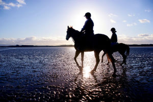 Students Horse Riding on the Beach